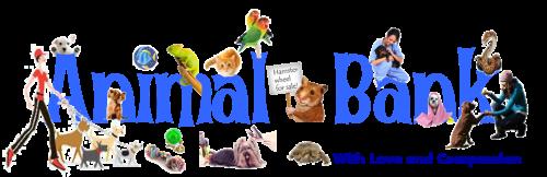 Animal-Bank-Logo-Full-Images-Blue1-500×162-1